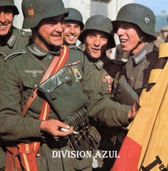 divisionazul023